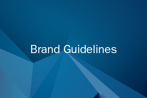 brand guidelines thumbnail
